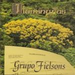 166 -Grupo Fielsons 2002 (SC)