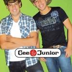 210 - Gee & Jr 2013  (PR)