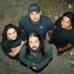238 - Banda Polyphone 2011 (ES)