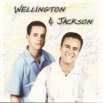 254 - Wellington & Jackson ( 2003)